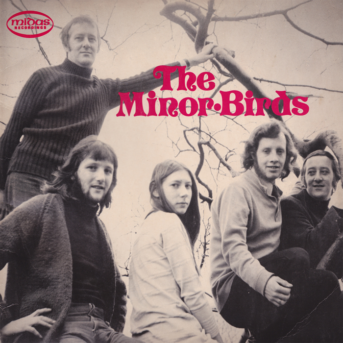 minor birds album cover